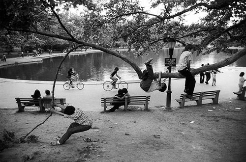 Central-Park-Pond-Kids-in-Tree-1973