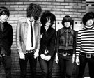 Thehorrors300